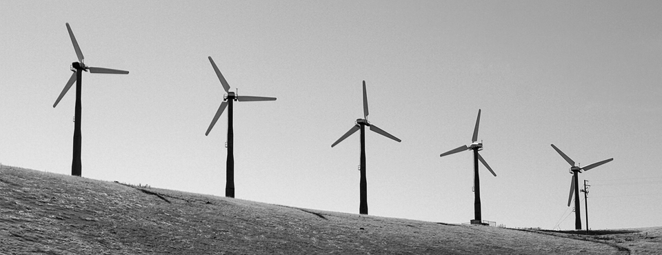 Renewable energy and negative externalities: the effect of wind turbines on house prices
